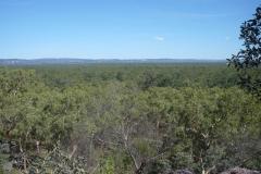 Kakadu & Litchfield - Diverse